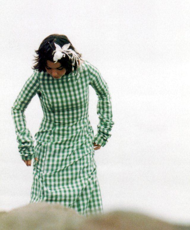 "I always love this dress!  Bjork in a beautiful 1990s ""La Casita de Wendy"" dress"