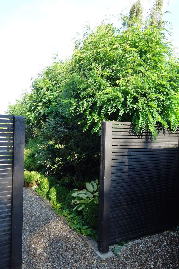 The fence allows the breeze to flow through but still affords privacy.