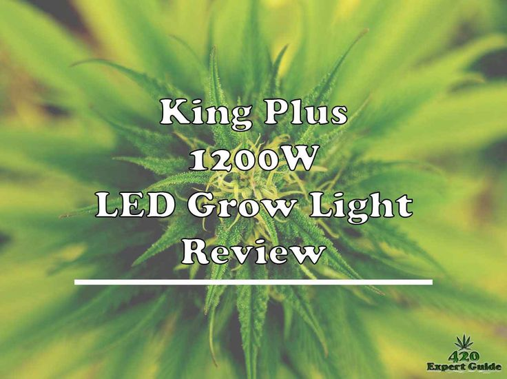 In This Review Of King Plus 1200w Fullspectrum Led Grow Light Author Revealed All The Essential Aspects Of King Plus 1200 Watt Led Grow Lights Grow Lights Led
