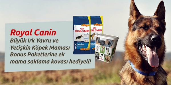 Hediyeli Royal Canin ürünleri Evcilbesinleri.com da