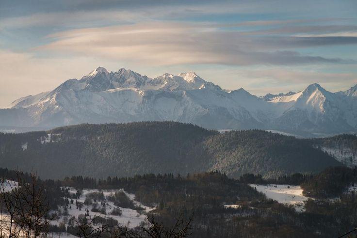 Tatry z osiedla Gabańka, Szczawnica  Prowadzi tam zielony szlak biegnący ze Szczawnicy na Prehybę.
