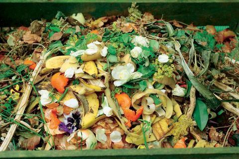 Biologischer Kompost