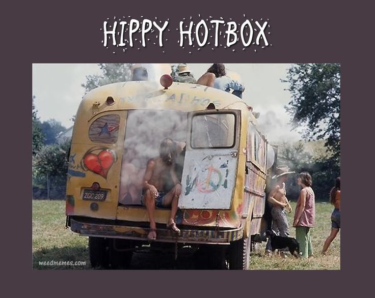 "Hippy Pothead Memes | Cannabis Memes | Funny Hippy Pot Memes | Marijuana Hotbox Weed Memes Hippy Hotbox Weed Memes Ever wonder where ""hotbox"" originated? Was it the native americans? the Eskimos? NO! It was hippies who came"