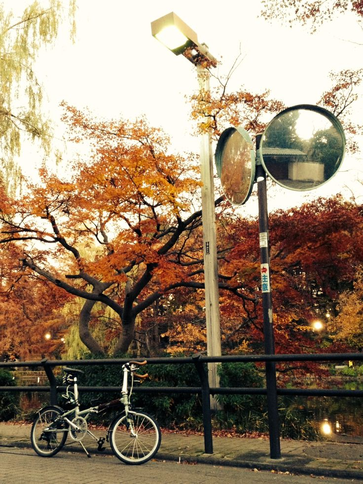 Copyright © オレンジメガネ 様 / 2010年 ボードウォークD7 / 石神井公園にて。車での旅行中に購入し、それからいつも旅のお供なので、仙台、川越、横浜、名古屋、京都、大阪、広島、福岡と全国の街を走り回っております。