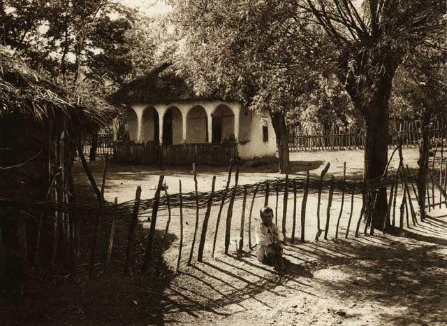 Burila,-curte-taraneasca - case traditionale romanesti