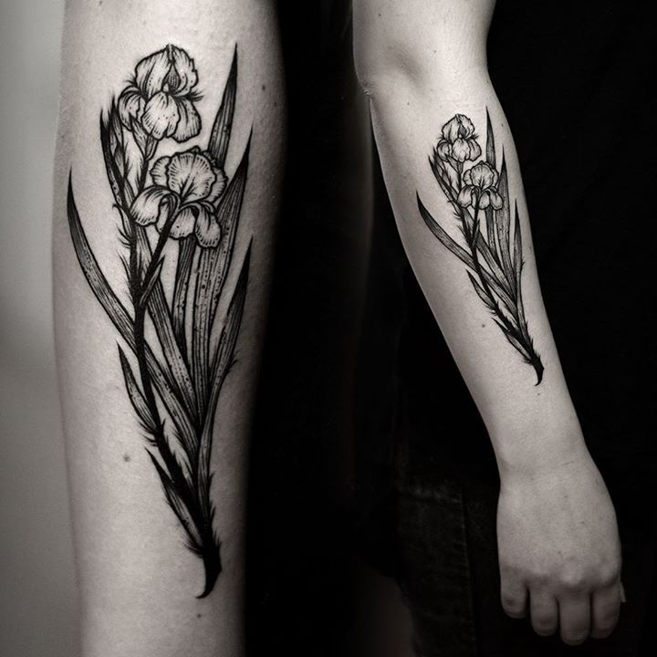 Kamil Czapiga - Iris flower #Tattoo #Dotwork