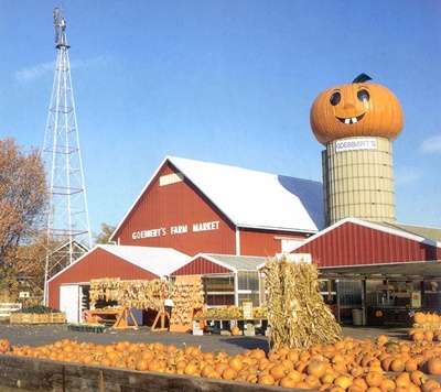 17 Best Images About All About Goebbert 39 S On Pinterest Pumpkins Shrubs And Pumpkin Patches