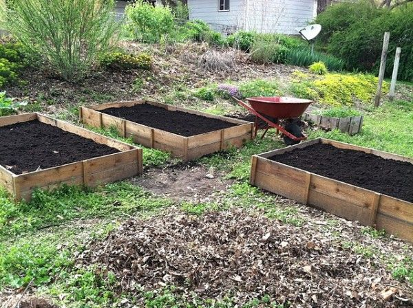 Three 4 39 X8 39 Raised Cedar Beds For 45 Total Do It