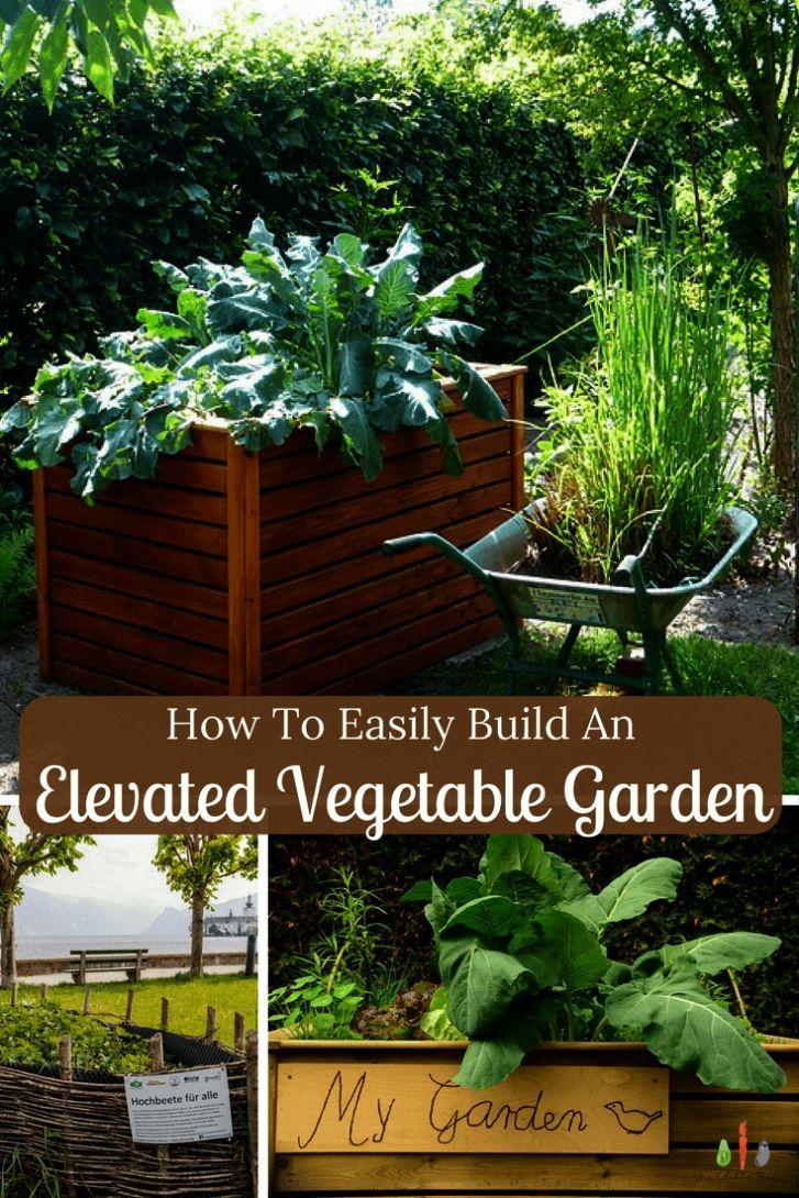 Vegetable Gardening For Beginners Philippines Minus Gardening