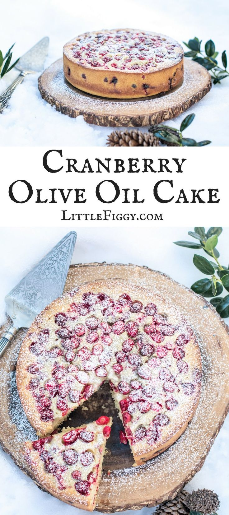 Cranberry Olive Oil Cake with a hint of orange, perfect for the holidays! Happily baked using @Silpat! Get the recipe at Little Figgy Food. #Silpat #ad via @LittleFiggyFood