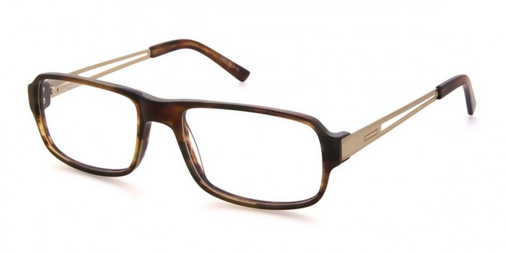 Akeem Tortoise Shell / Golden Metal - Mens Prescription Glasses | Ozealglasses