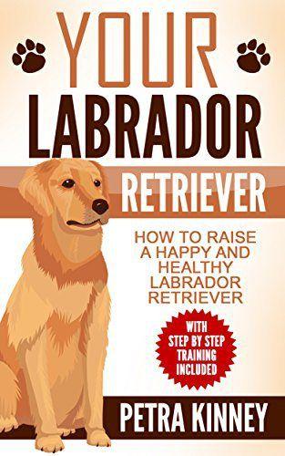 Labrador Retriever: The Simple Guide To Raising A Happy & Healthy Labrador Retriever (With Step by Step Training Included) (Retrievers, Labrador Dogs, Labrador Puppy Training, Obedience Training) - http://www.thepuppy.org/labrador-retriever-the-simple-guide-to-raising-a-happy-healthy-labrador-retriever-with-step-by-step-training-included-retrievers-labrador-dogs-labrador-puppy-training-obedience-training/