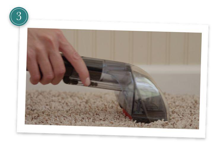 Step 3 STEAM CLEAN CARPETS w/                     *   Borax   *