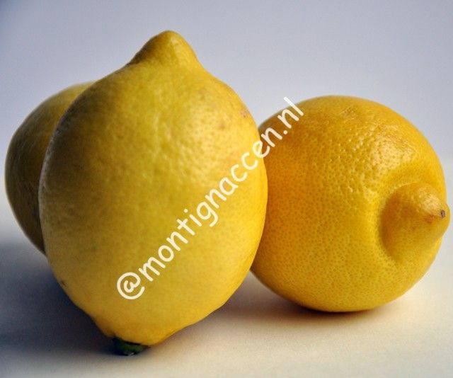Drink elke ochtend een glas lauw water met wat uitgeperste citroen APPELAZIJN Gebruik appelazijn in kleine hoeveelheden. Je kunt het gebruiken als saladedressing. Appelazijn is een sterk vochtafdrijvend middel omdat het gemaakt is van appels en de fruitzuren van appels creëert een vetverbrandend proces. Het bevat ook veel potassium dat helpt om de vetopname te verlagen. ... Lees verder...