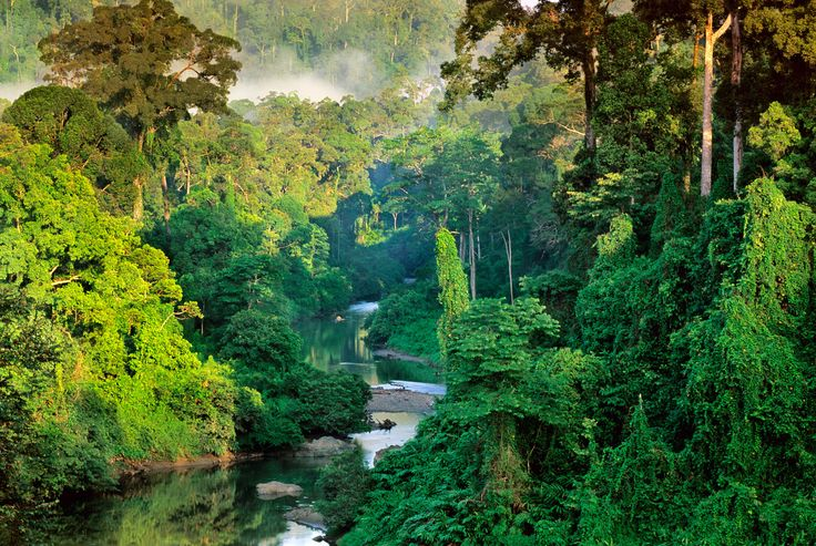 Resultados de la Búsqueda de imágenes de Google de http://www.arastiralim.net/wp-content/uploads/2012/05/Borneo-Adas%C4%B1-G%C3%BCneydo%C4%9Fu-Asya.jpg
