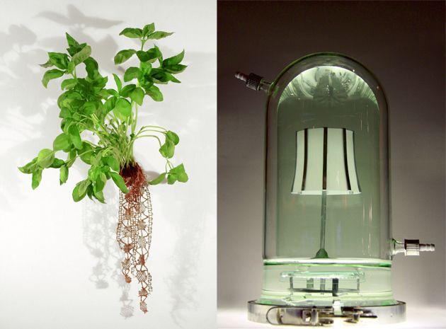 the-blogazine-biodesign-Biolace-half-life-lamp