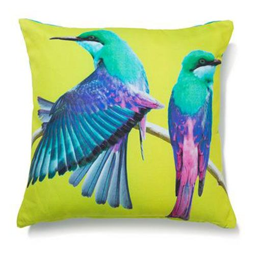 Kmart - Parrot Photo Cushion, $10.00