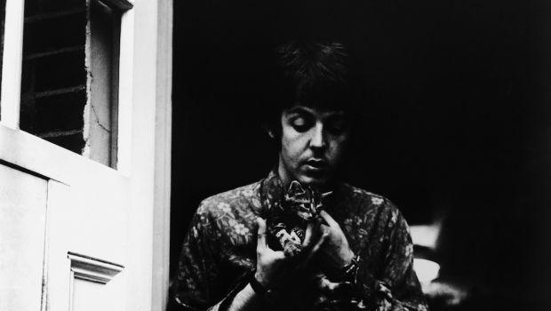Beatles Paul McCartney seduto sulla soglia di casa a San Giovanni Bosco, con due gattini e un vecchio cane pastore inglese, 20 giugno 1967