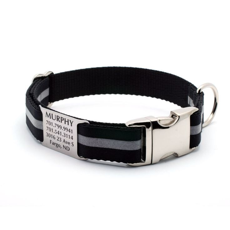 Reflective Dog Collar with Built-In Laser Engraved Personalized Nameplate - BLACK. $31.99, via Etsy.