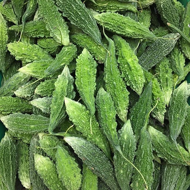Karela aka bitter melon, bitter gourd or bitter melon.  In other words it's #BITTER!  Give this veggie a chance because given some amazing spices, garam masala, coriander, turmeric and red chili powder you can make it part of your #healthymeal!  Karelas are full of antioxidants, vitamin C, great for digestion and above all helps with beautiful skin health!  .  .  .  #8020living #loveyourfood #colouryourlife #eattherainbow #moregreens #wholefoods #nourishus #letfoodbethymedicine