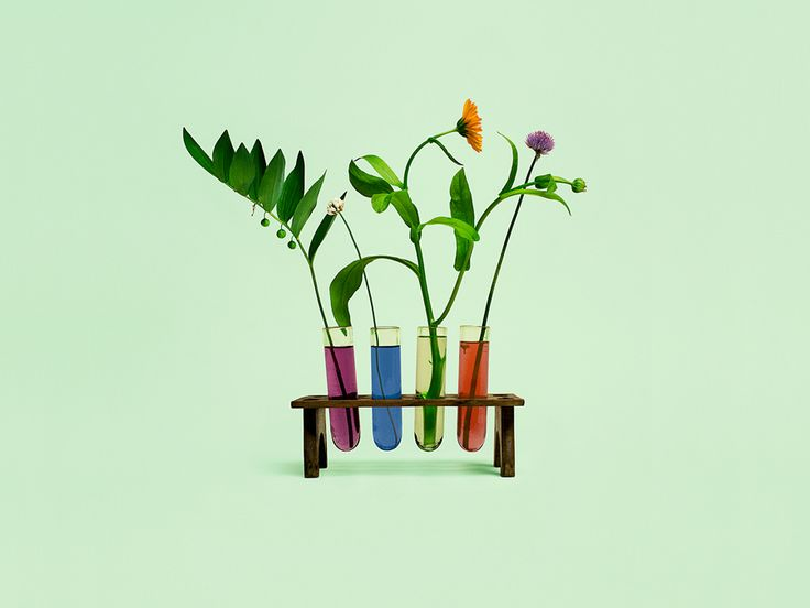 Still life photography by Bond for Finnish health store PÜR.