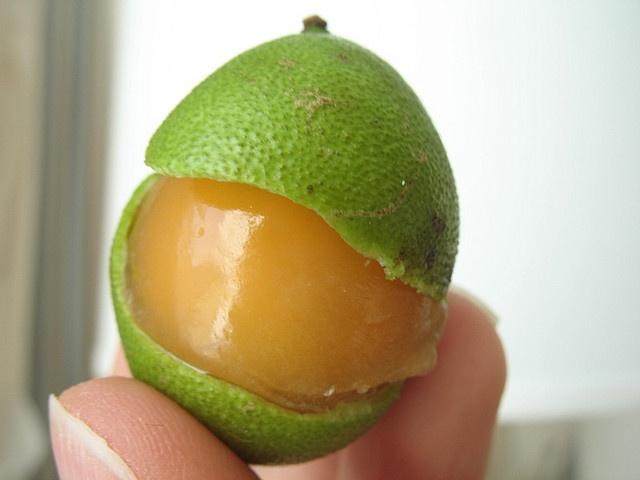 quenepa fruit fruit crisp