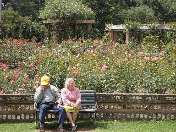 Jardin Botanico Bogota