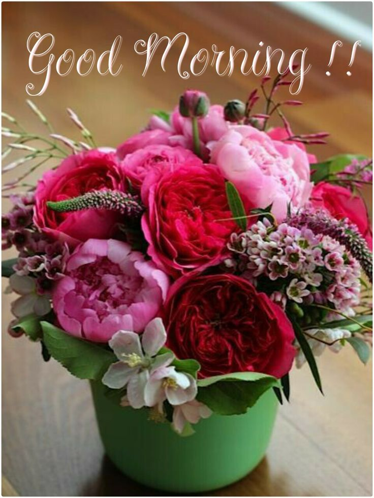 Good Morning....Have a great day!