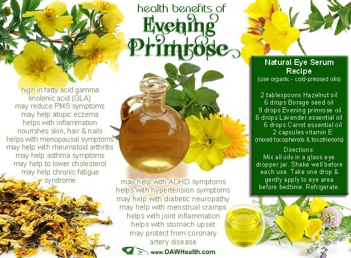 "Evening primrose, a wildflower that grows throughout North America and commonly called, ""The King's Cure-All,"" seems to have a wide range of healing attributes. This plant gets its name from..."