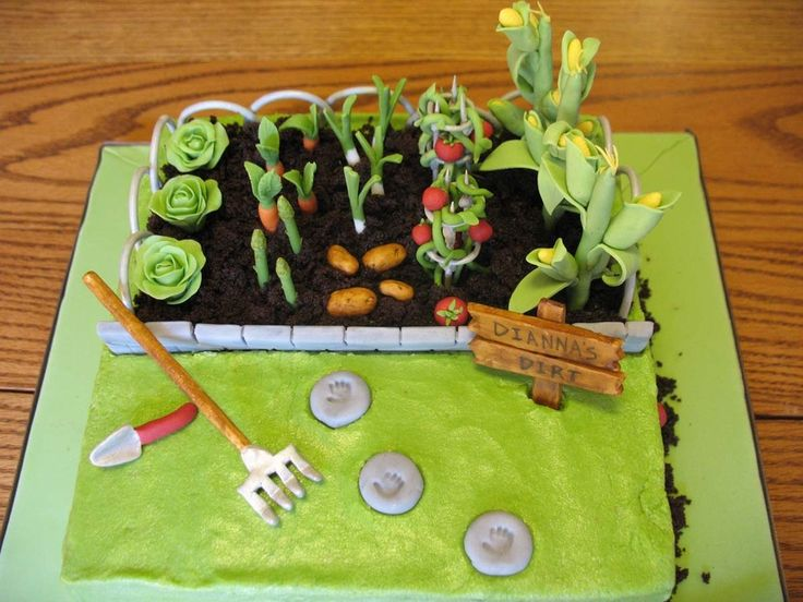 132 best garden cakes images on Pinterest Garden cakes Biscuits
