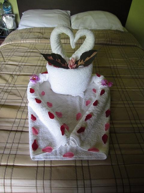 Towel Origami by Denali Wally, via Flickr