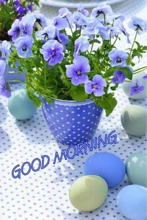 Good morning sister and yours, happy Sunday, God bless ☕,