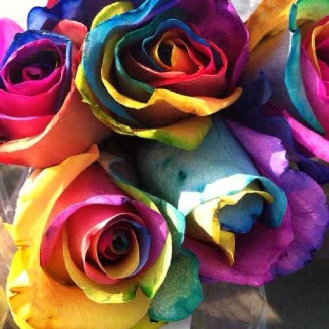 19 Best Color Wheel Art Images On Pinterest Pretty