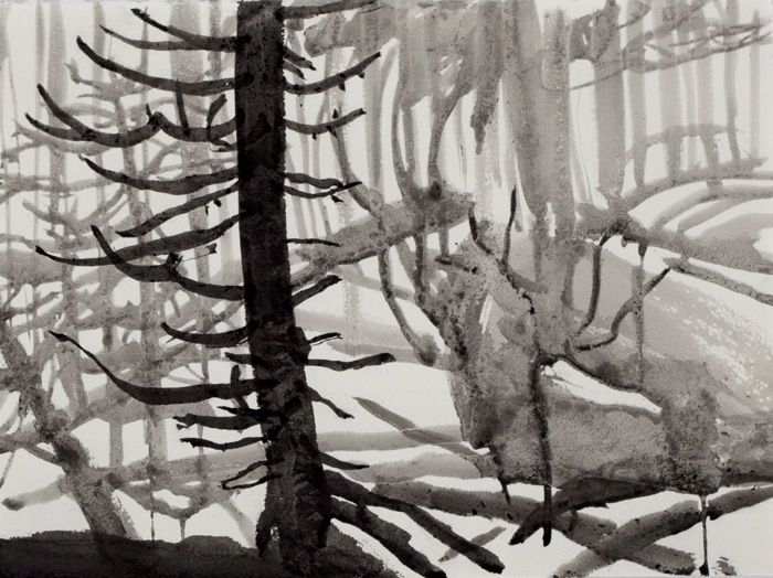 "Janicke Schønning - Winter: Winterdrawings - ""Shorthand Spruce"" - From various winter days drawing outside in the spruce forest nearby - Ink and frost on paper, 2013"