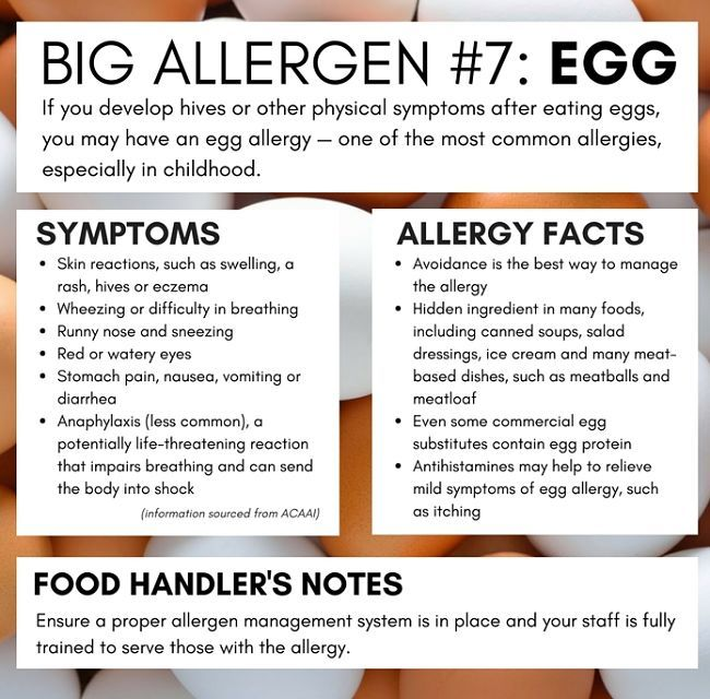 All About Egg Allergy See More In This Article Egg Allergy Symptoms Allergies Egg Allergy