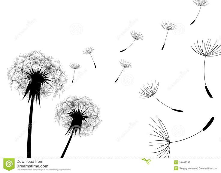 Abstract Dandelion Royalty Free Stock Photos - Image: 6639428