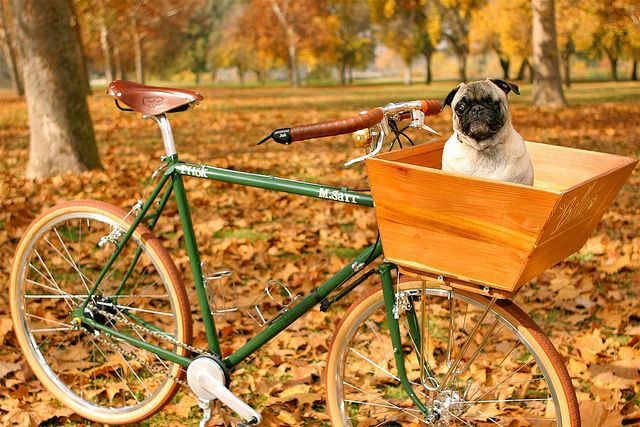 Pug Hauler 6000 PH6K by Blacktop Cyclery, via Flickr