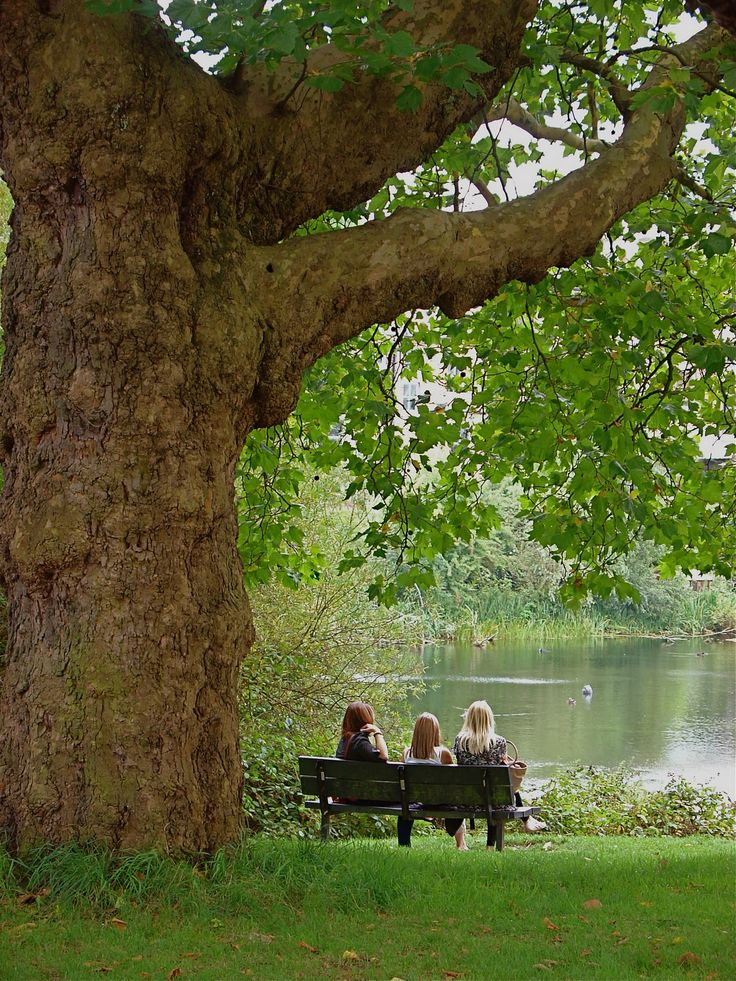 Hampstead Heath has plenty of room. At times you cannot tell you are still in the City. Enjoy refreshments at Kenwood or Parliament Hill fields and look at the London skyline.