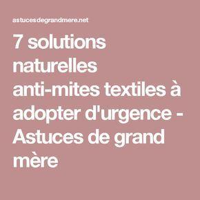 7 solutions naturelles anti-mites textiles à adopter d'urgence - Astuces de grand mère