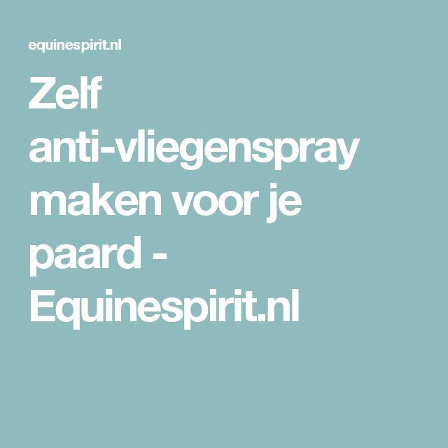 Zelf anti-vliegenspray maken voor je paard - Equinespirit.nl