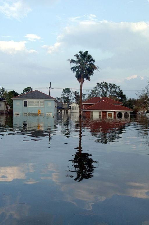 essay hurricane katrina new orleans Hurricane katrina-new orleans hurricane katrina significantly affected a vast number of people, including those who were not actually present during the.