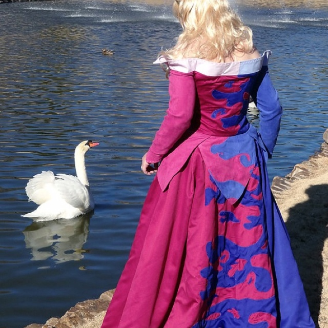 The 25  best Sleeping beauty cosplay ideas on Pinterest | Disney ...