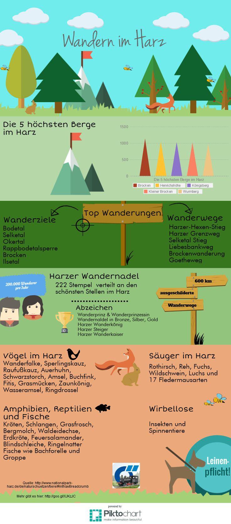 Unsere Infografik übers Wandern im Harz!  Mehr gibt es auf dem Harz App Blog:  http://www.harz-app.de/wandern-im-nationalpark-harz-infografik/  #Wandern #Harz #Infografik #infographic #nationalpark #tiere #natur #wald