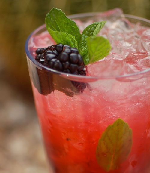 16 Skinny Summer Cocktails - I am making this blackberry mojito for the pool today!