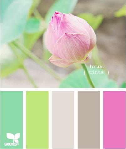 lotus tints: spring inspiration