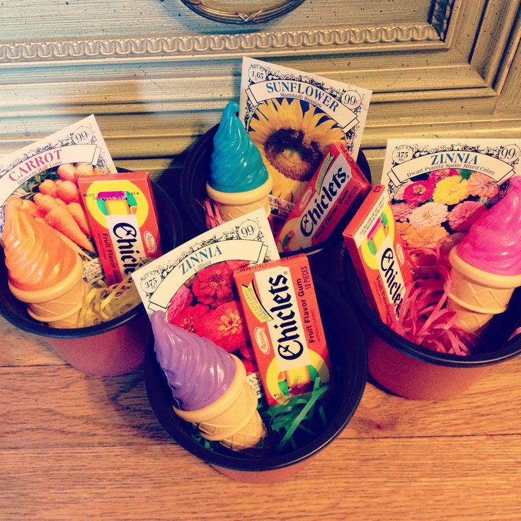 Affordable & cheap spring garden birthday party favors!!! Buy all supplies from the Dollar Store- 6 pk of small planter cups. 6 pk Chiclets. 3 pk ice cream bubbles. Planting seeds (flowers for girls, veggies for boys) 4 for $1. Stuff bottom with filler grass.