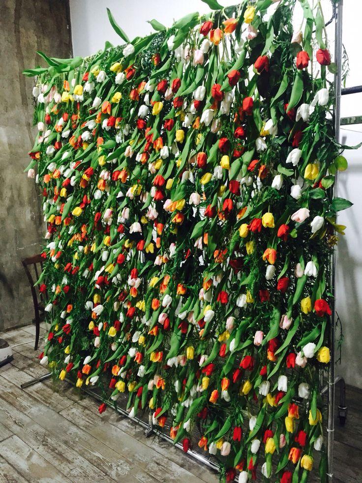 Tulip press wall. Backstage. #tulips #photowall #presswall