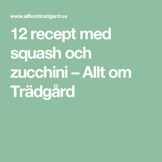 12 recept med squash och zucchini – Allt om Trädgård