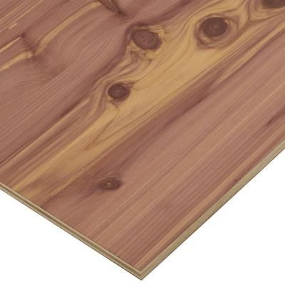 Project Panels Aromatic Cedar Plywood (Price Varies by Size) - 2519 - The Home Depot