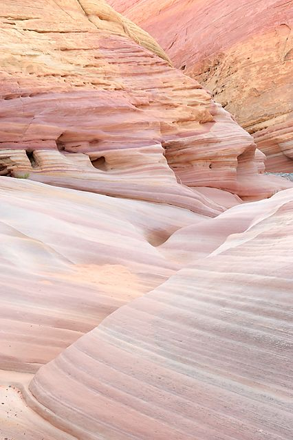 Pink Canyon, Valley of Fire State Park, NV